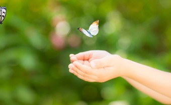 Children hands and flying butterfly against green spring background. Ecology concept